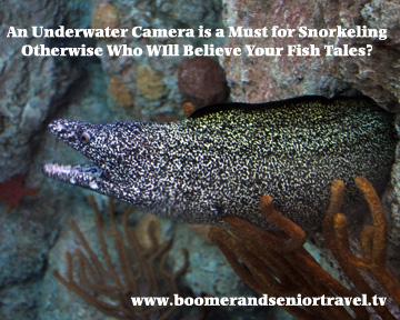 Underwater Camera Eel